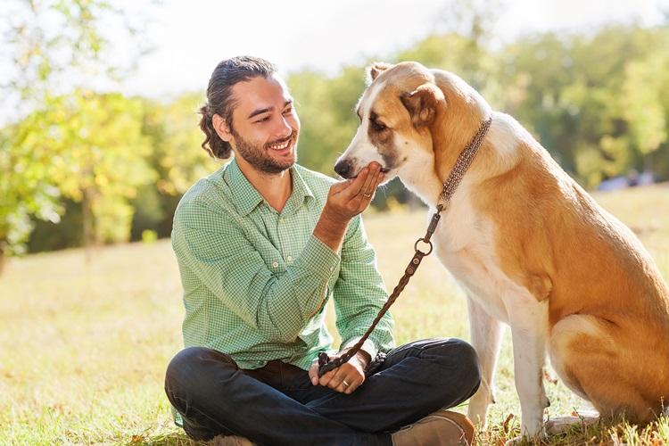 COMMENT L'ANIMAL FAMILIER DEVIENT-IL UN ACTEUR ANTI STRESS